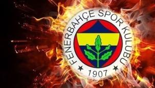 Fenerbahçe, harcama limiti nedeniyle TFF'ye dava açıyor