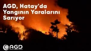 AGD, HATAY'DA YANGININ YARALARINI SARIYOR