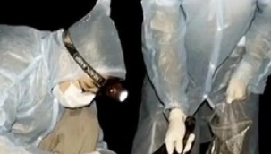 Vuhan'daki bilim insanlarından olay itiraf: Koronavirüs mağaradaki yarasanın saldırısından sonra yayıldı