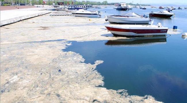 Bakan Kurum, Marmara Denizi'ni kaplayan deniz salyasının oluşmasının 3 nedenini sıraladı