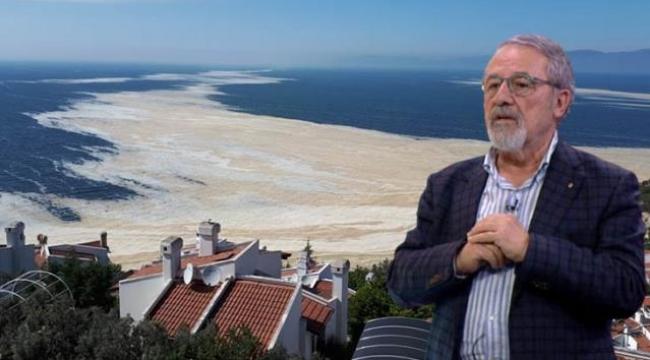 Manşet Koronavirüs Ekonomi Spor Magazin Dünya Yerel Haberler İndirim Kuponları Döviz Kuru Namaz Vakitleri Prof. Dr. Görür'den Ulaştırma Bakanı'nın deniz salyası çıkışına itiraz: Umarım şaka yapmıştır