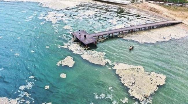 Müsilaj kabus yaşatmaya devam ediyor! Mavi bayraklı Altın Kemer Plajı deniz salyasıyla kaplandı