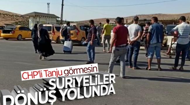 Bayram sonrası Suriyeliler, sınır kapılarından Türkiye'ye dönüyor