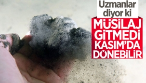 Uzmanlar uyardı: Marmara'da Kasım ayında müsilaj tekrarlayabilir
