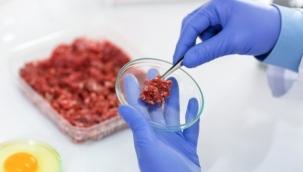 Dünyada ve Türkiye'de yapay et üretimi