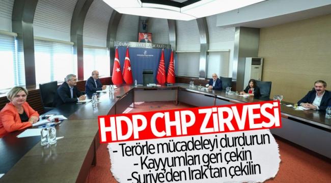 HDP heyeti, Demokrasi Tutum Belgesi'ni CHP'ye sundu